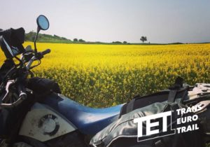 tet-turkey-fb-01